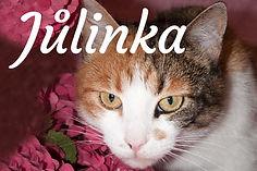 Jůlinka_titulka.jpg