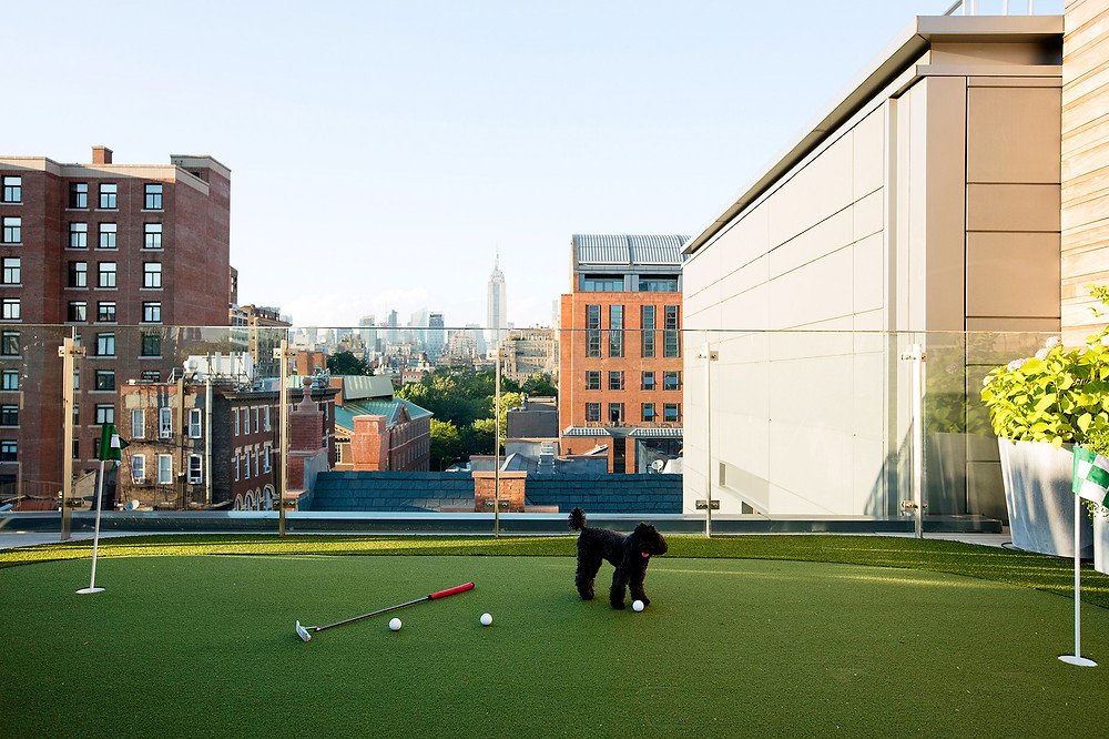 Home Green Advantage Rooftop Putting Green