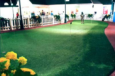 Home Green Advantage Indoor Green at Chelsea Peirs