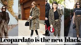 Leopardato is the new black