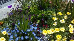 Perennial Border Summer 2012