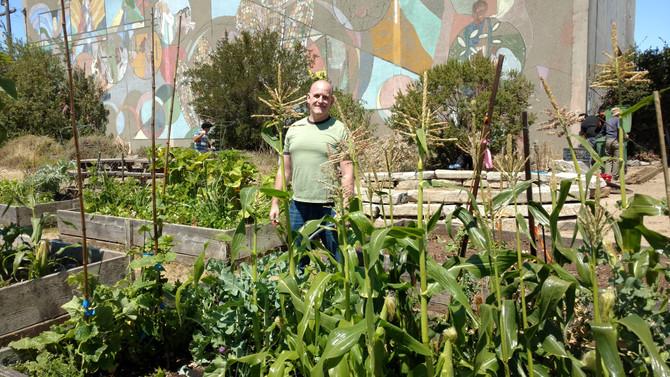 Update on the Community Garden Plot