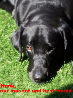Our Mascot and best friend, Hank_edited