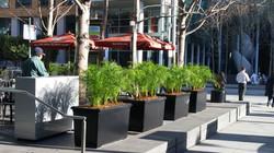 Plaza Renovation Downtown San Francisco