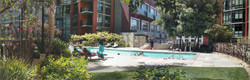 Wide Pic of Pool