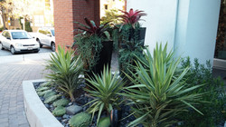 Front Bed Private HOA