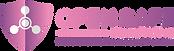 Open Safe Logo.png