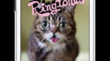 Lil BUB's Ringtones!