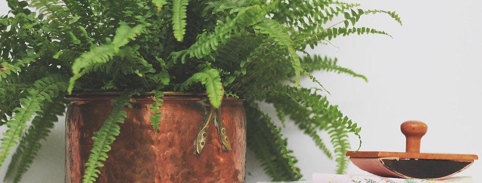 Vintage coper plant pot/bucket