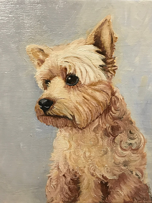 "Yorkshire Terrier 8"" x 10"" oil painting on canvas"