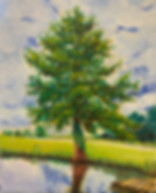 NCCypress.jpeg, cypress, nc, oil painting