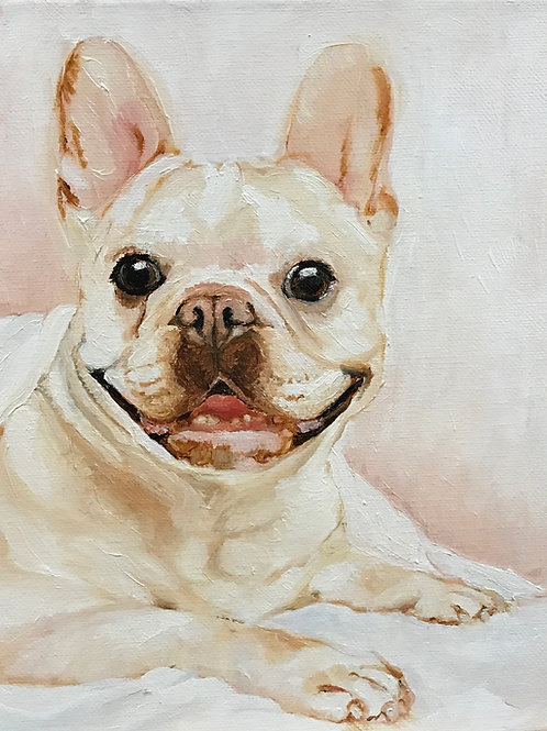 "French Bulldog 8"" x 10"" oil on canvas"