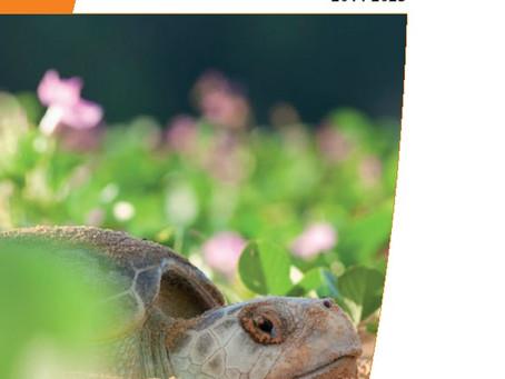 Le PNA tortues marines 2014-2023 validé!