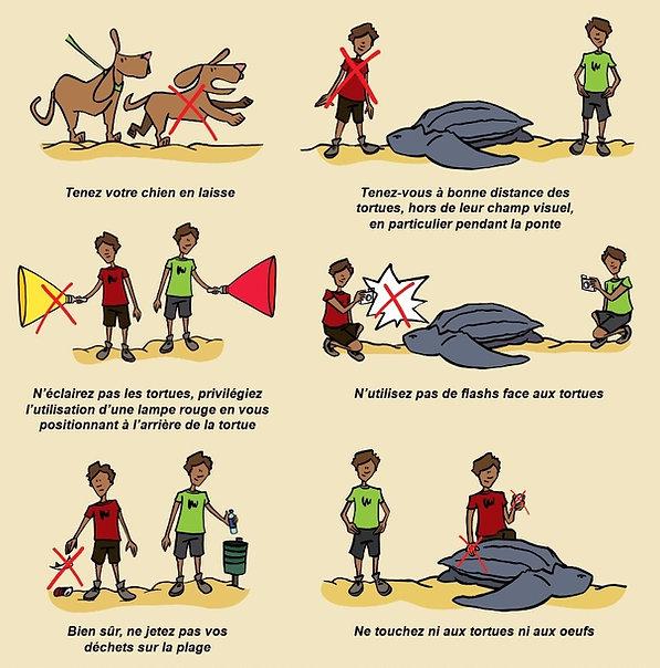Illustration-regles-observations.jpg