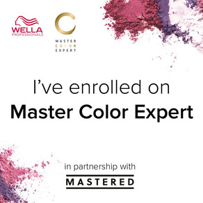 Master Color Expert