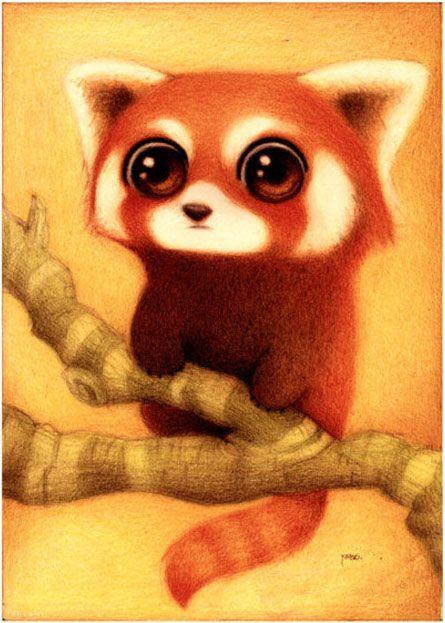 Strani INKOntri: il panda minore