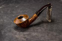 Smooth Rhodesian w/ cumberland stem