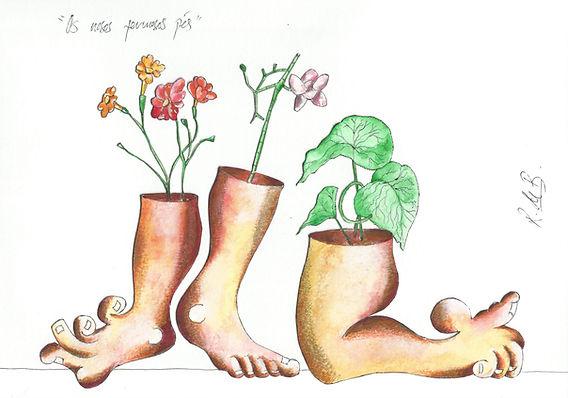 Os nosos fermosos pés
