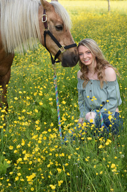 buttercup-field-horse.jpg
