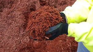 Red mulch.jpg