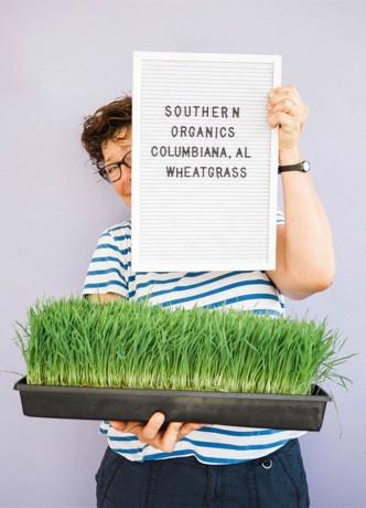 Southern Organics - Wheatgrass