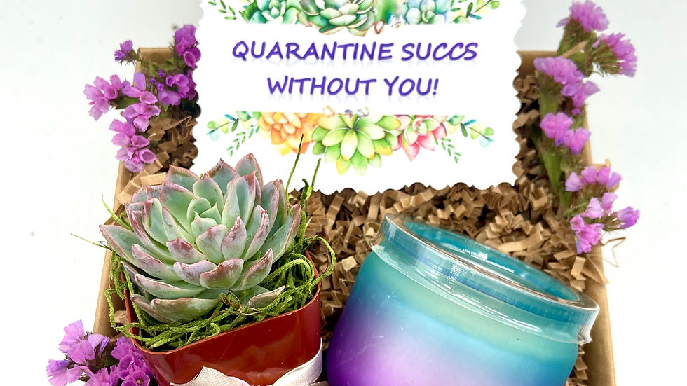 Quarantine SUCCS gift set