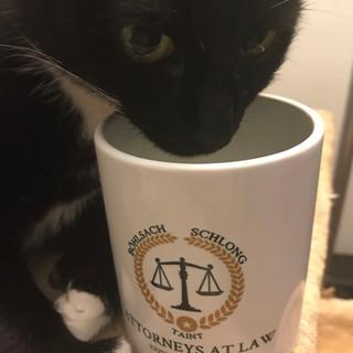 coffee mugs in the wild