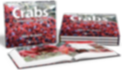 Crabs of Christmas Island, Max Orchard, Christmas Island crabs