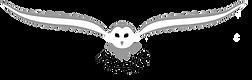 fnacp logo blk text 11022019.png