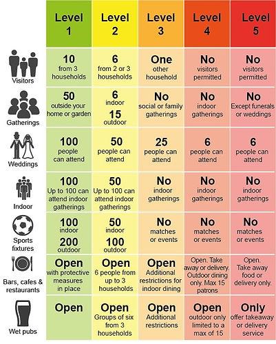 Crona -19 Categories.jpg