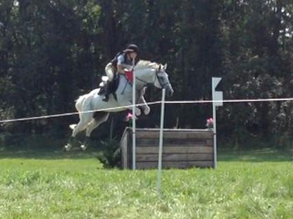 2-Rosie-jumping-kensington-farms-mi.jpg