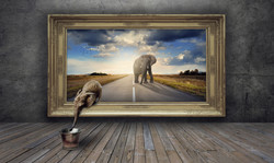 Elephant picture frame road