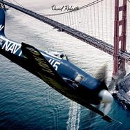 0386 Sea Fury Golden Gate Bridge.jpg