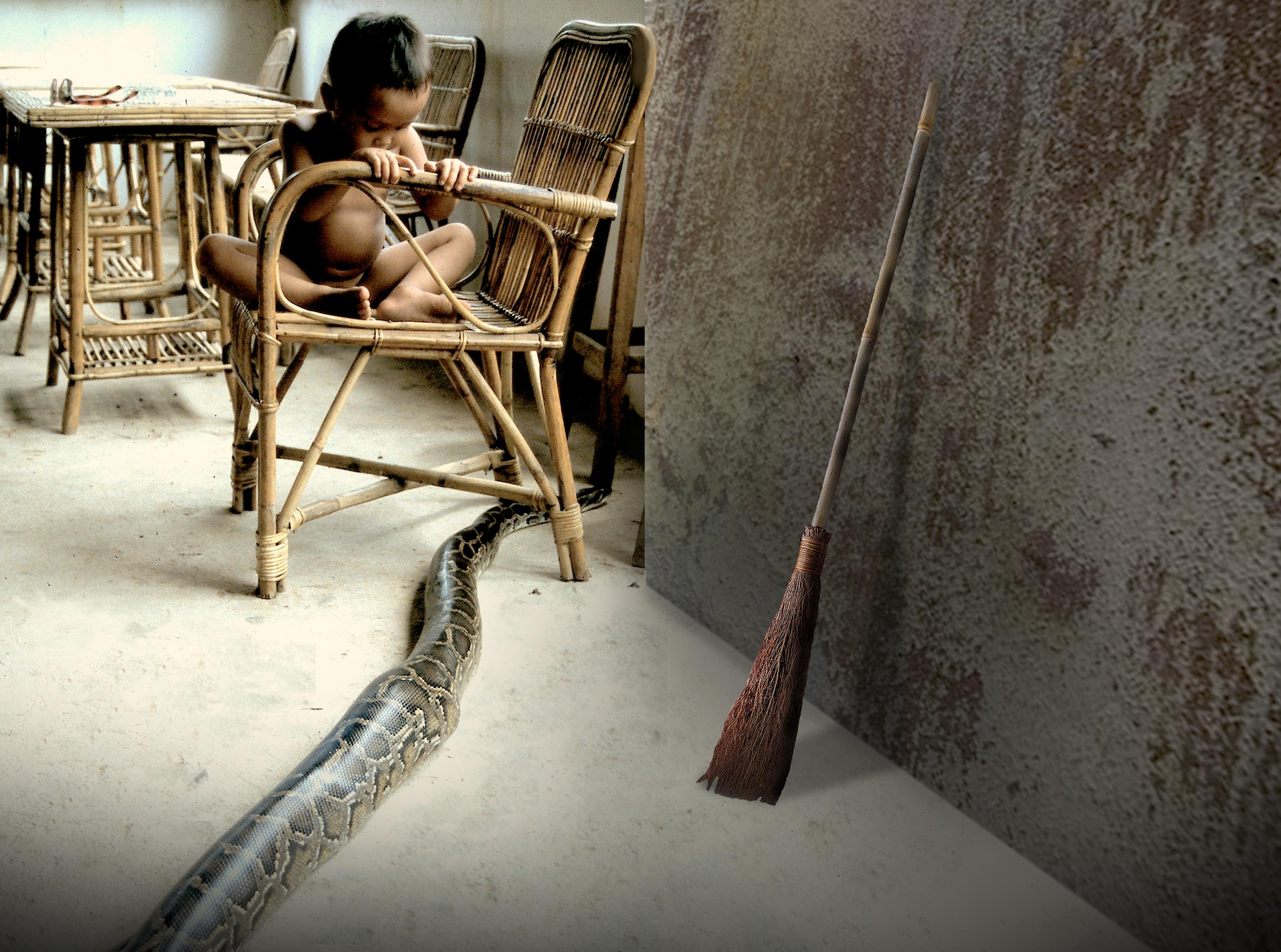 Cambodian boy snake