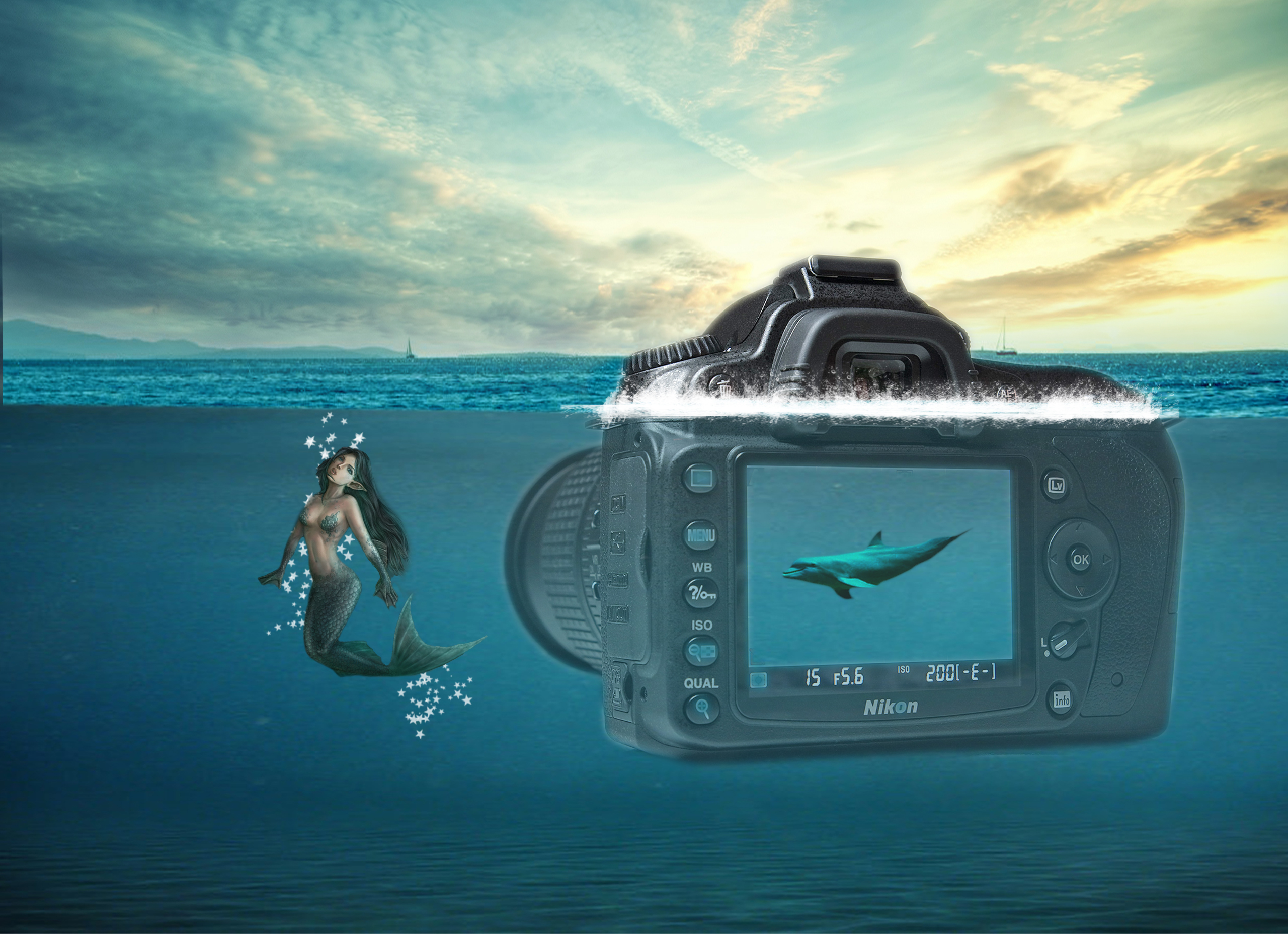 Mermaid camera dolphin