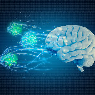 AN OVERVIEW OF COGNITION, ENGAGEMENT AND MULTIMEDIA LEARNING AND TEACHING
