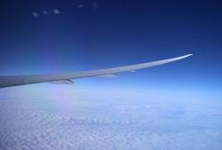 wing sky 1
