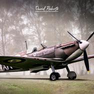 0398 Spitfire-misty-trees.jpg
