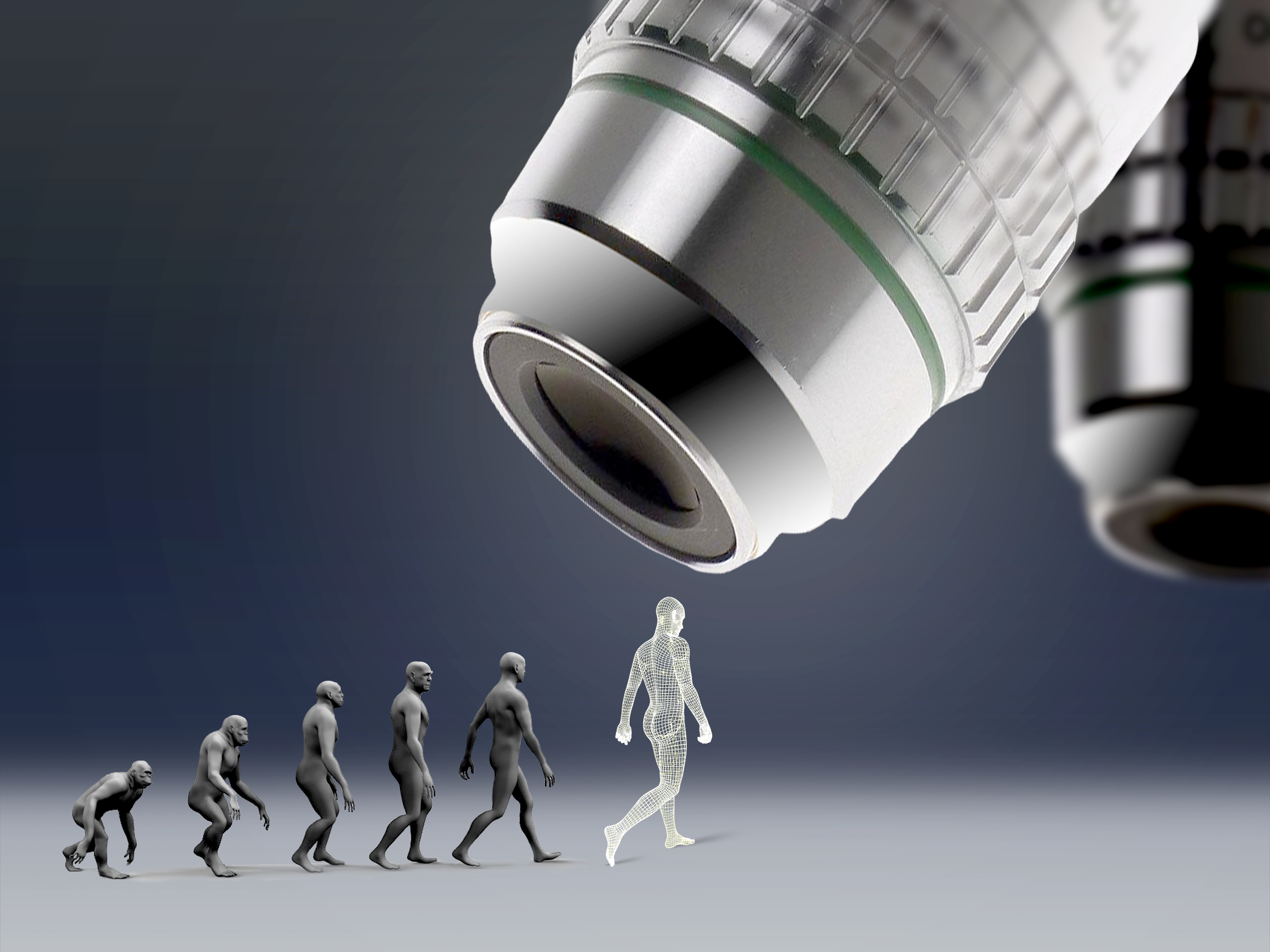 Human evolution microscope