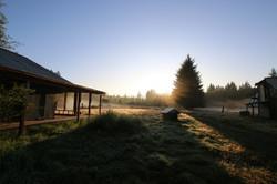 cabin woods 1