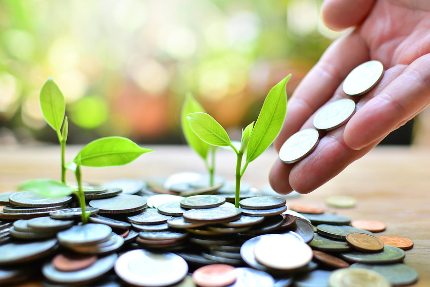 coins growth up to profit concept  inves