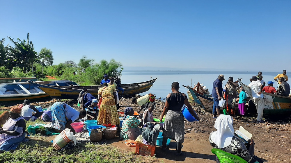 Women at the shores of Lake Victoria preparing fish for sale despite the disaster