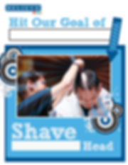 Shave a Head