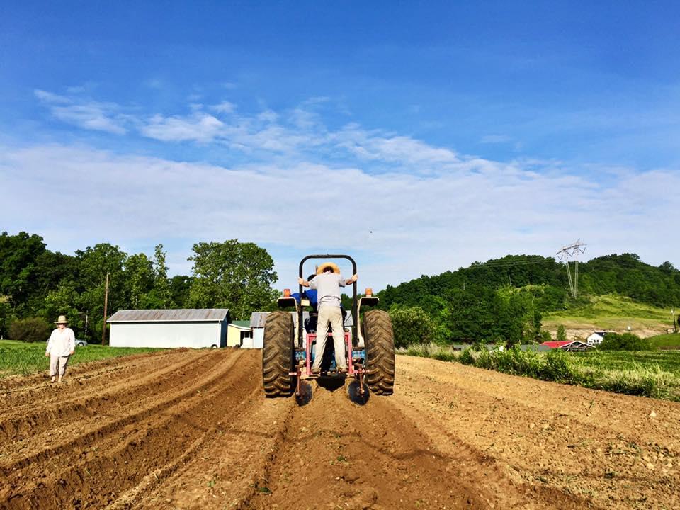 Casey Doing Tractor Work