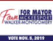 Fawn for Mayor - Social Media Graphic 3