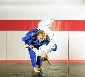 Hyfforddiant Jujitsu