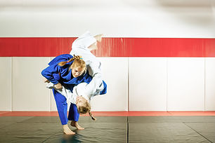 Jujitsu Training