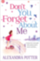 Dont you forget about me by Alexandra Potter