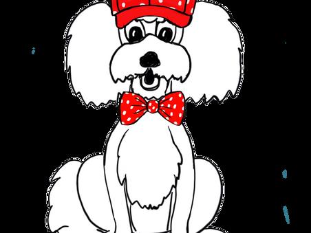Germanys next top dog oder Fräulein Wolkes Kollektion