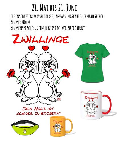 03_Zwillinge_Marketing.png